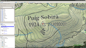 Google Earth view of Puig Sobirà